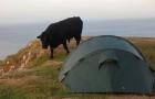 Schottland_2012_0147