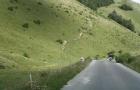 Kroatien_2013_0230
