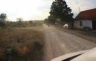 Kroatien_2013_0295